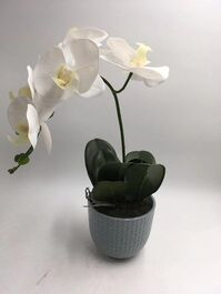 ARTIFICIAL POTTED ORCHID - WHITE - 43CM